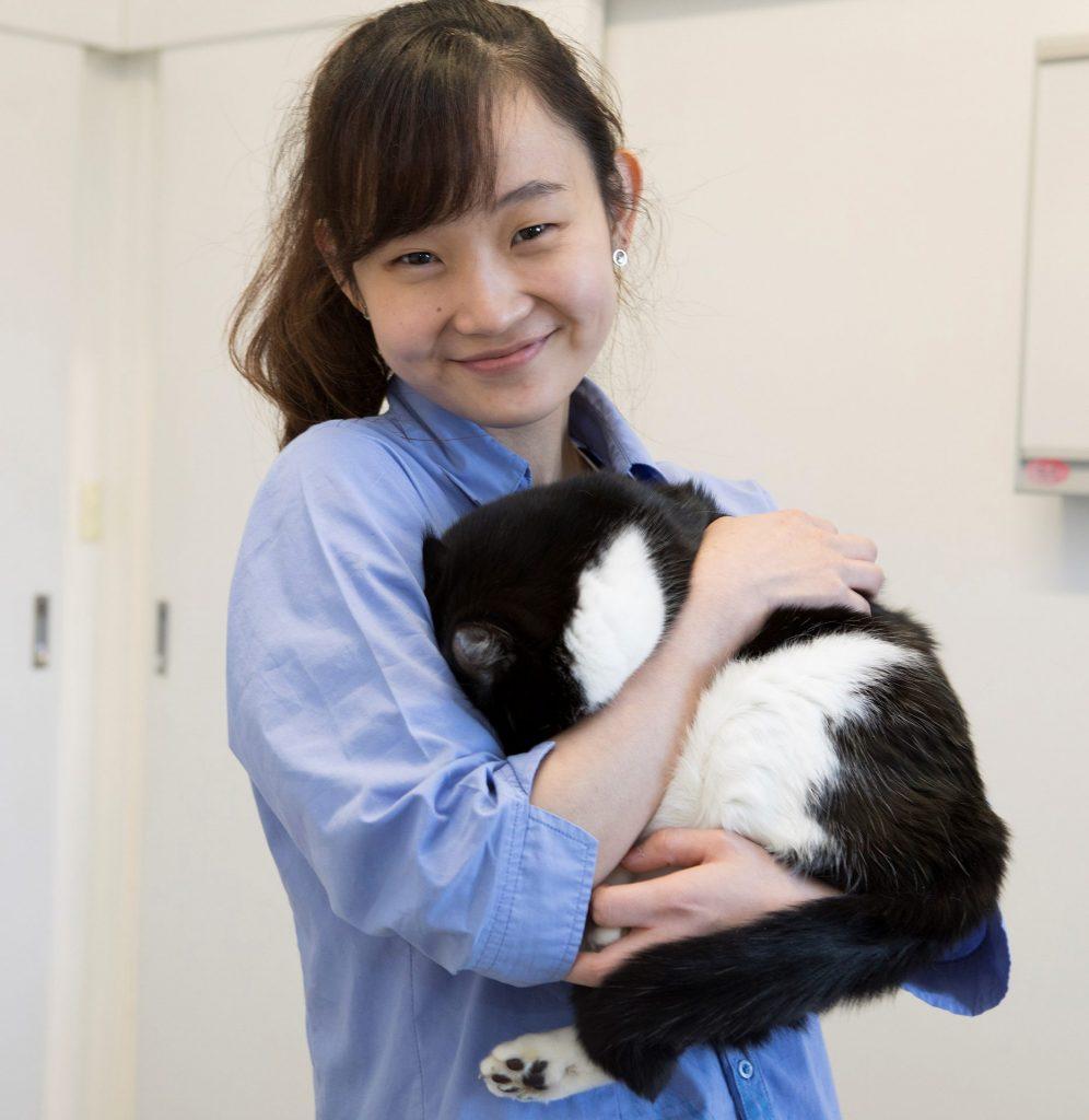 Engadine Veterinary Hospital